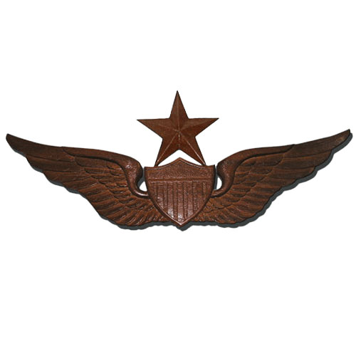 Army Insignia & Wings