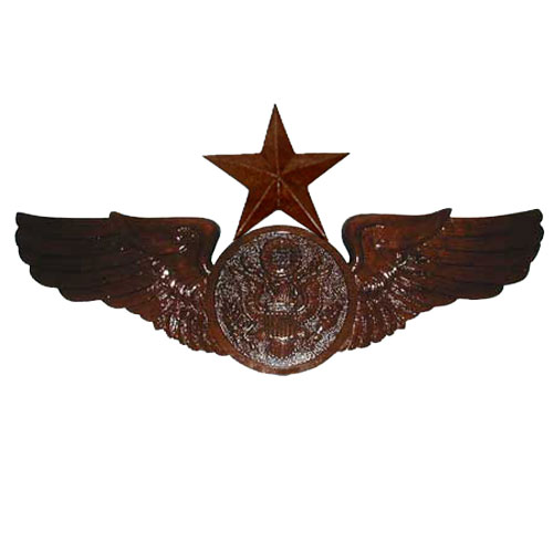 Air Force Insignia & Wings