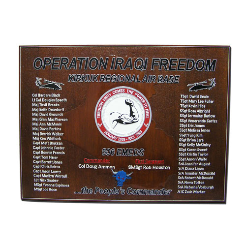 506 EMEDS Deployment Plaque