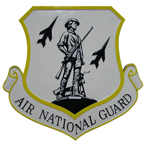 Air National Guard White Emblem