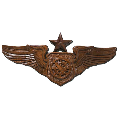 Senior Air Battle Manager Wings Insignia Plaque