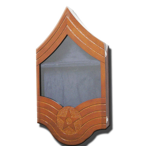 US Air Force E9 Retirement/Shadow Box Natural Light
