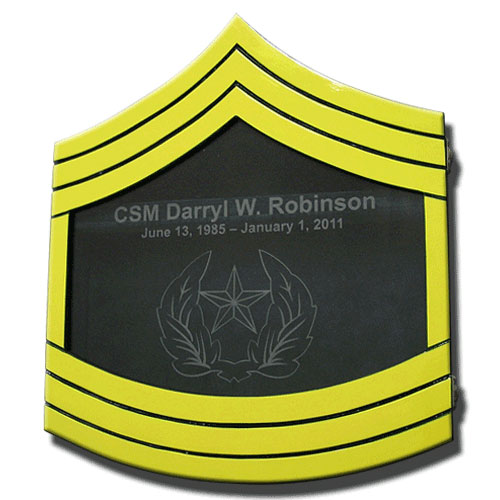 US Army E9 Retirement/Shadow Box Colored